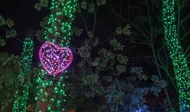Neon roze hart op een boom stock afbeelding