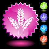 Neon Seal Set - Wheat Royalty Free Stock Photography