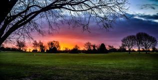 Neon sunrise with silhouette of trees. Neon sunrise over a park with tree silhouette. Photo of Durdam Downs, Bristol, UK. Taken in 2017 Royalty Free Stock Photo