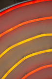Neon tubes Royalty Free Stock Image