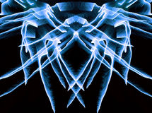 Neon-winged spider. Fantastical firework beast Stock Photo