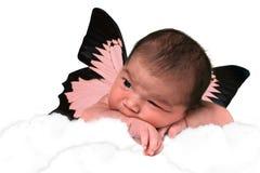 Neonata adorabile Immagine Stock
