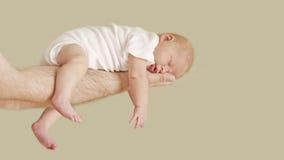 Neonata appena nata Fotografia Stock
