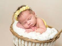 Neonata appena nata addormentata fotografia stock libera da diritti