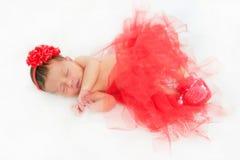 Neonata appena nata addormentata Fotografie Stock Libere da Diritti