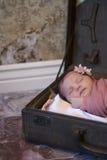 Neonata appena nata in valigia Fotografia Stock Libera da Diritti