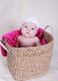 Neonata in cestino Fotografia Stock Libera da Diritti