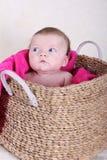 Neonata in cestino Fotografia Stock