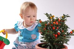 Neonata che guarda un fiore fotografia stock