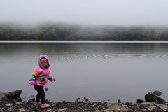 Neonata nel lago nebbioso Immagini Stock Libere da Diritti