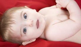 Neonata su colore rosso fotografia stock libera da diritti