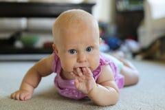 Neonata sveglia che succhia sulle sue dita Fotografia Stock