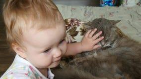Neonata sveglia con il gatto archivi video