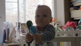 Neonata sveglia in una greppia rotonda stock footage