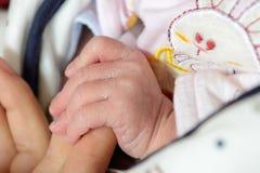 Neonatal hand Royalty Free Stock Photo
