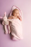 Neonate Royalty Free Stock Photo
