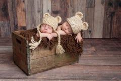 Neonati gemellati che dormono in una cassa di legno Immagine Stock