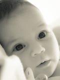 Neonato Fotografie Stock Libere da Diritti