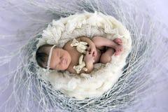 Neonato addormentato in un canestro Fotografie Stock