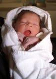 Neonato appena nato Immagini Stock Libere da Diritti