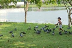 Neonato asiatico che gioca nel parco Fotografia Stock
