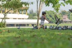Neonato asiatico che gioca nel parco Immagini Stock