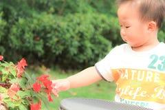 Neonato asiatico che gioca in un giardino Fotografia Stock