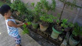 Neonato che impara laboratorio di sezionamento di giardinaggio con le pinze del giocattolo video d archivio