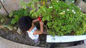 Neonato che impara laboratorio di sezionamento di giardinaggio con le pinze del giocattolo stock footage