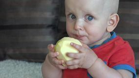 Neonato che mangia mela video d archivio