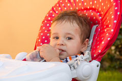 Neonato con i morsi di zanzara multipli Allergia ai morsi di insetto Fotografie Stock