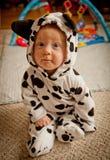 Neonato in costume dalmata Fotografie Stock Libere da Diritti