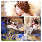Neonato del collage Fotografia Stock