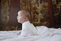 Neonato di 7 mesi Fotografia Stock Libera da Diritti