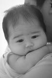 Neonato faticoso Fotografia Stock Libera da Diritti
