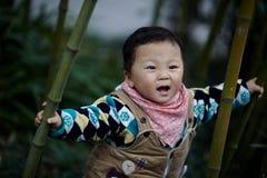Neonato in foresta di bambù fotografia stock
