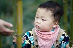 Neonato in foresta di bambù immagine stock libera da diritti