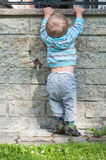 Neonato in grigio ed in blu Fotografia Stock Libera da Diritti