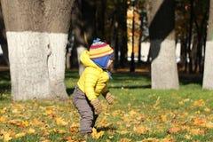 Neonato nel parco di autunno Immagine Stock
