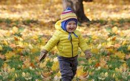 Neonato nel parco di autunno Immagine Stock Libera da Diritti