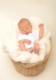Neonato o merce nel carrello infantile di sonno Immagini Stock Libere da Diritti