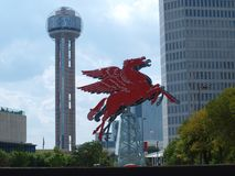 Neonet Pegasus Arkivfoton