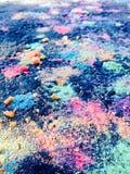 Neongraangewas Royalty-vrije Stock Fotografie