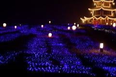 Neonlichten met verschillend het vorm-eerste lantaarnfestival in Nan-Tchang Stock Fotografie
