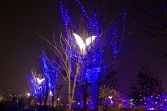 Neonlichten met verschillend het vorm-eerste lantaarnfestival in Nan-Tchang Royalty-vrije Stock Fotografie