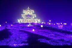 Neonlichten met verschillend het vorm-eerste lantaarnfestival in Nan-Tchang Royalty-vrije Stock Afbeeldingen