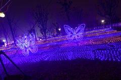 Neonlichten met verschillende vormen Royalty-vrije Stock Foto