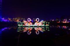 Neonlichten met verschillende vormen Stock Afbeeldingen