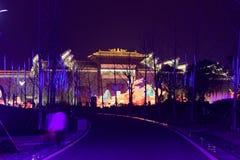 Neonlichter mit unterschiedlichem der Formen-D Laternenfestival zuerst in Nanchang Lizenzfreie Stockfotografie