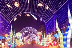 Neonlichter mit unterschiedlichem der Formen-D Laternenfestival zuerst in Nanchang Stockfoto